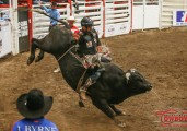 Rodeo Schools in Canada for 2016