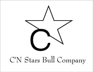 C'N Stars Logo