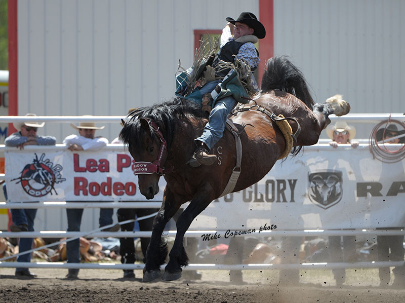Kyle Bowers rides Calgary Stampede's Shadow Warrior to 84.5 points. 2015 Lea Park Rodeo photo by Mike Copeman.