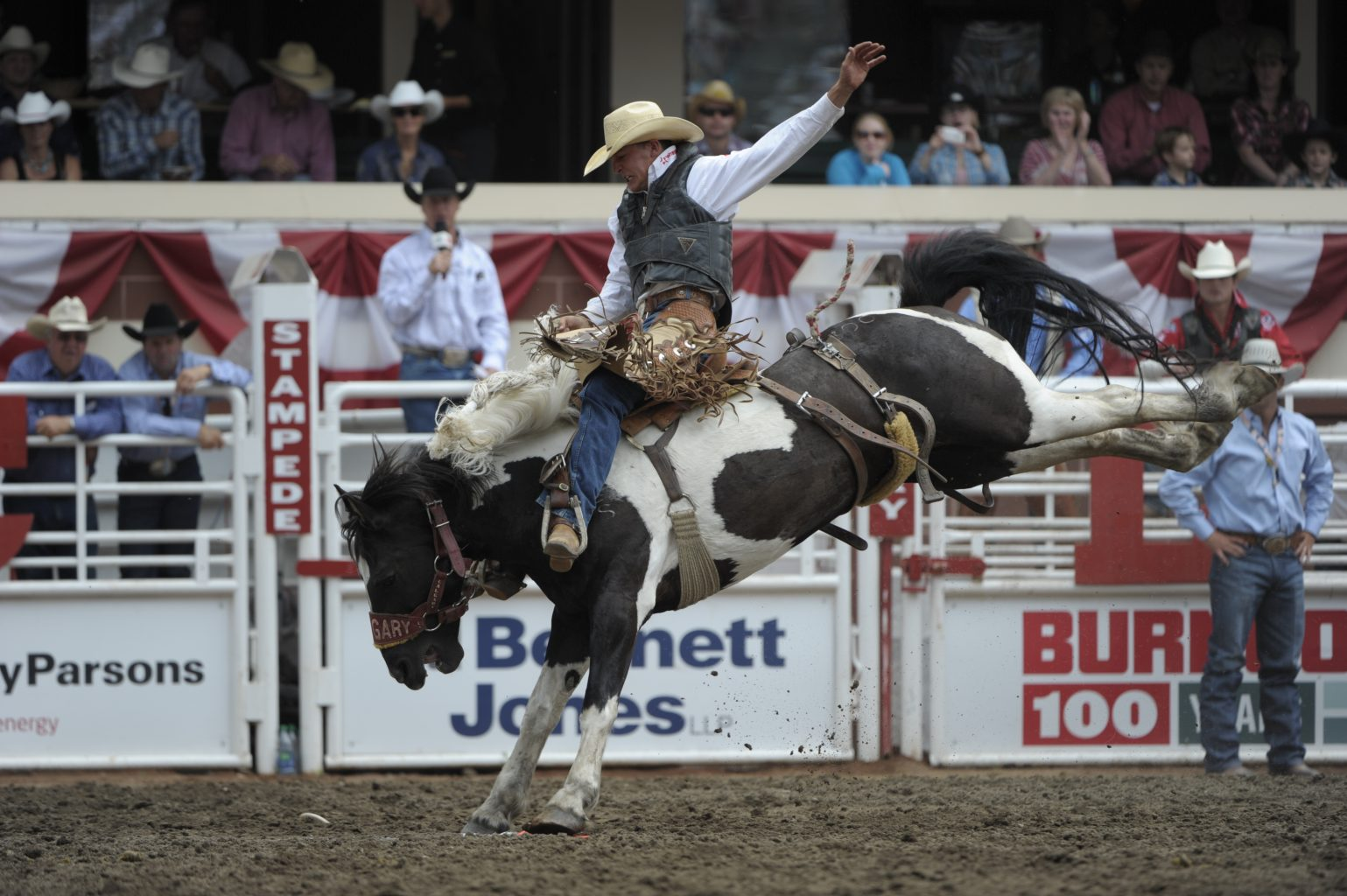 Champions Are Built In Calgary Stampede Novice Events