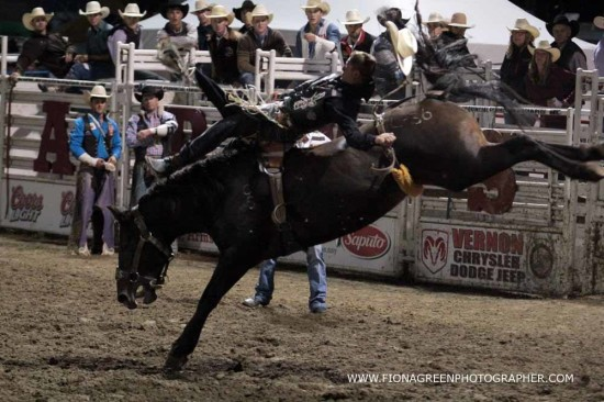 Top Rodeo Cowboys Earn Spots At 2017 Calgary Stampede