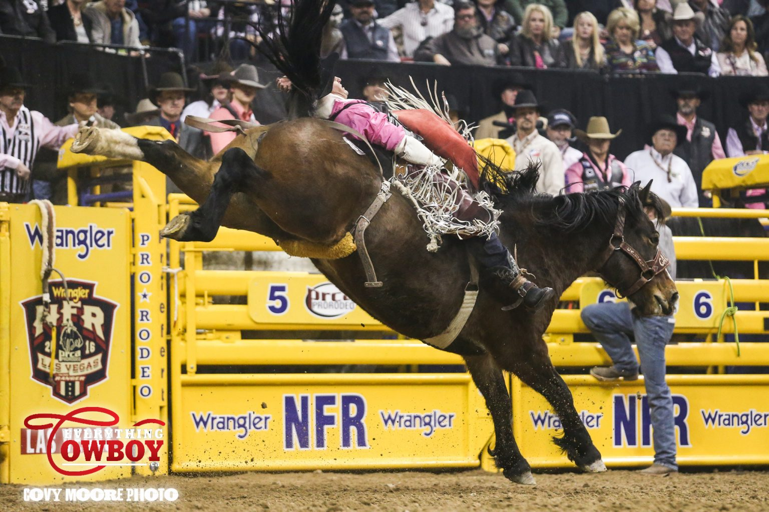 Calgary's Reckless Margie showed Jessy Davis some of the horsepower coming out of Canada in 2016 during the fifth round of competition at the Wrangler National Finals Rodeo.