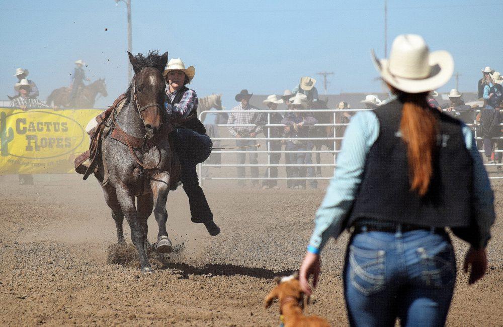 Jenny Massing Goat Tying Stovin Everythingcowboy Com