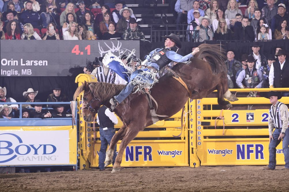 Canadians Looking For San Antonio Rodeo Championships
