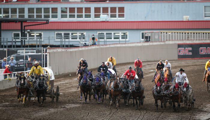 2019 Calgary Stampede Gmc Rangeland Derby Calgary